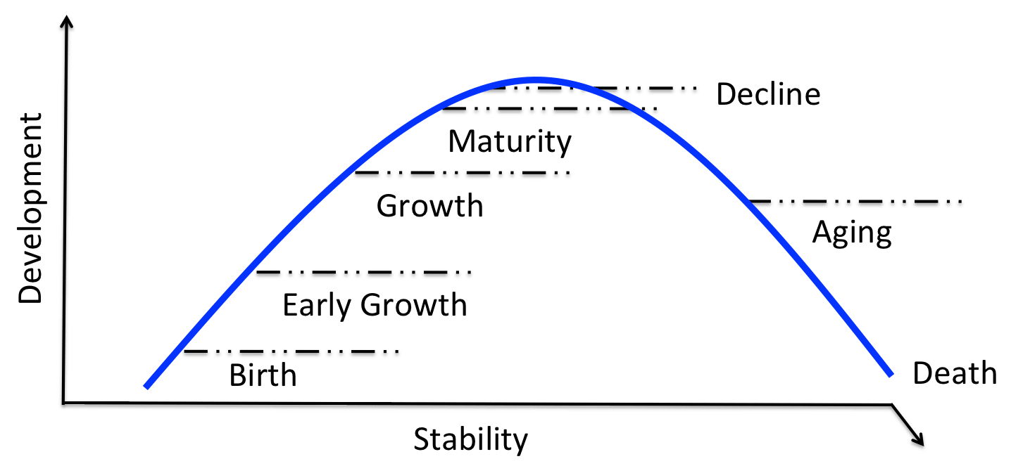 stability vs change in organisations Causes and cures of stress in organizations © 1993, david s walonick, phd  generally, stress appears to be a result of any change in one's daily routine.