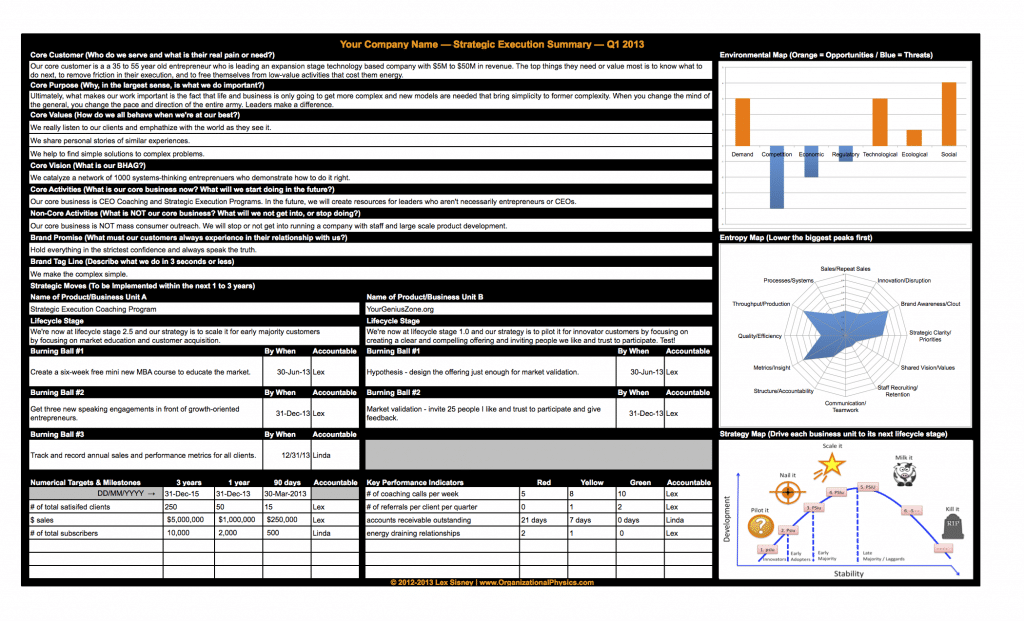 Organizational Physics Strategic Execution Plan Sample
