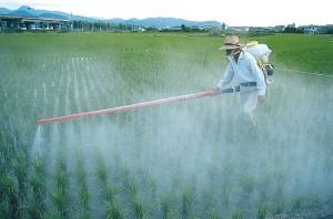 pesticides1