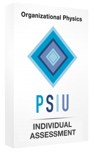 PSIUIndividualAssessment3d