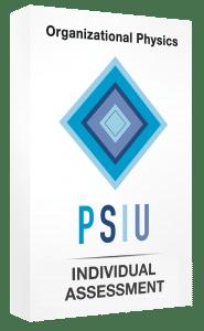 PSIUIndividualAssessment3d