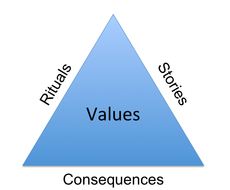 organizational values case study