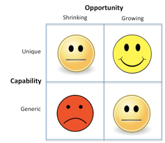 Figure 21. Not all opportunities and capabilities are created equal